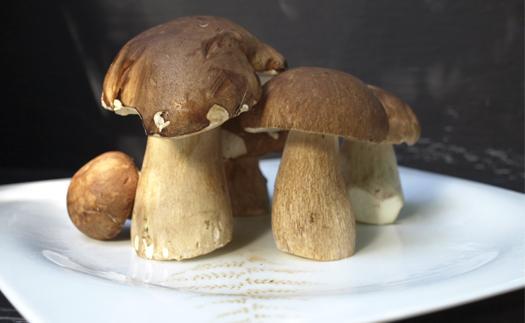 Noticia Receta de ensalada de hongos al natural