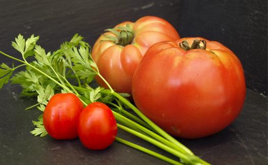 Noticia El tomate: un bocado muy de verano (incluye receta)